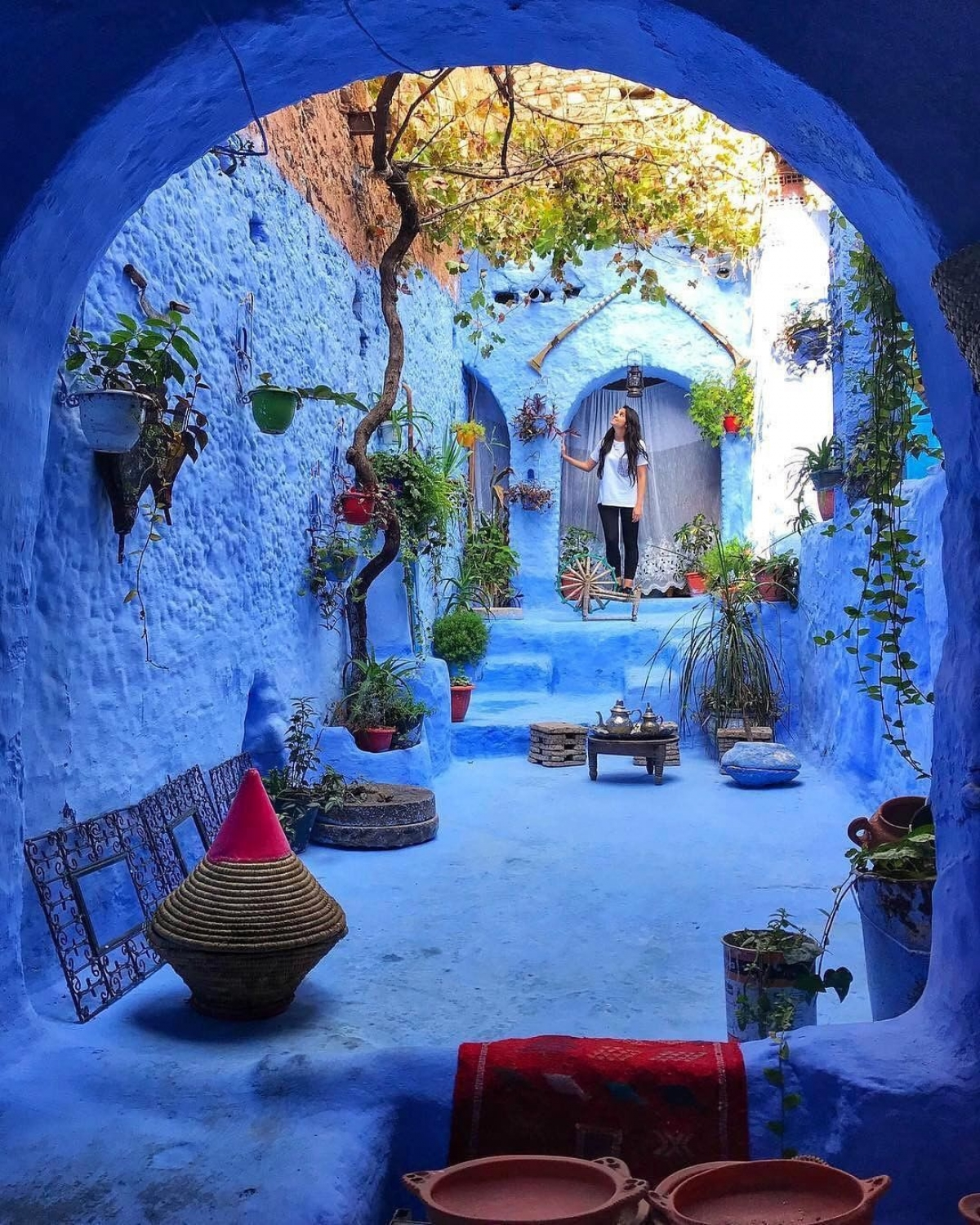 General 1200x1500 architecture building photography women arch portrait display Morocco old building plants flowerpot trees blue