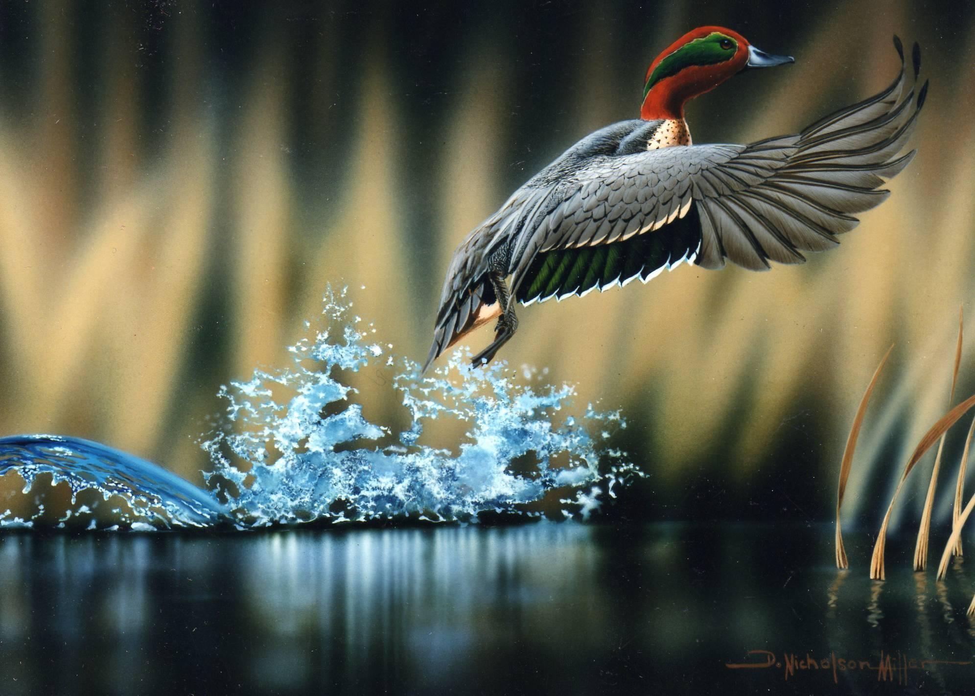 General 1992x1422 nature birds painting artwork digital art