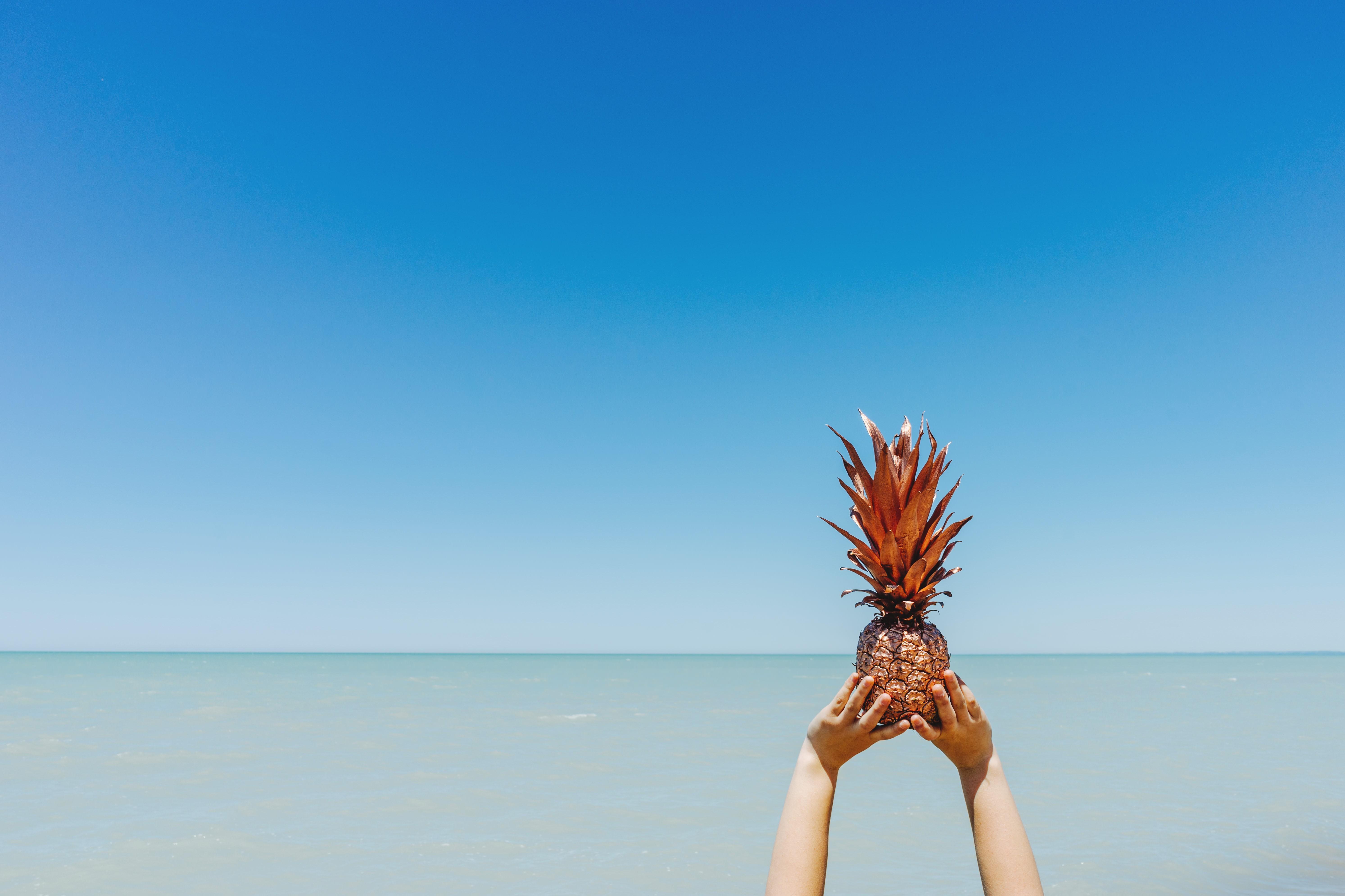 General 5974x3983 nature pineapples plants fruit minimalism