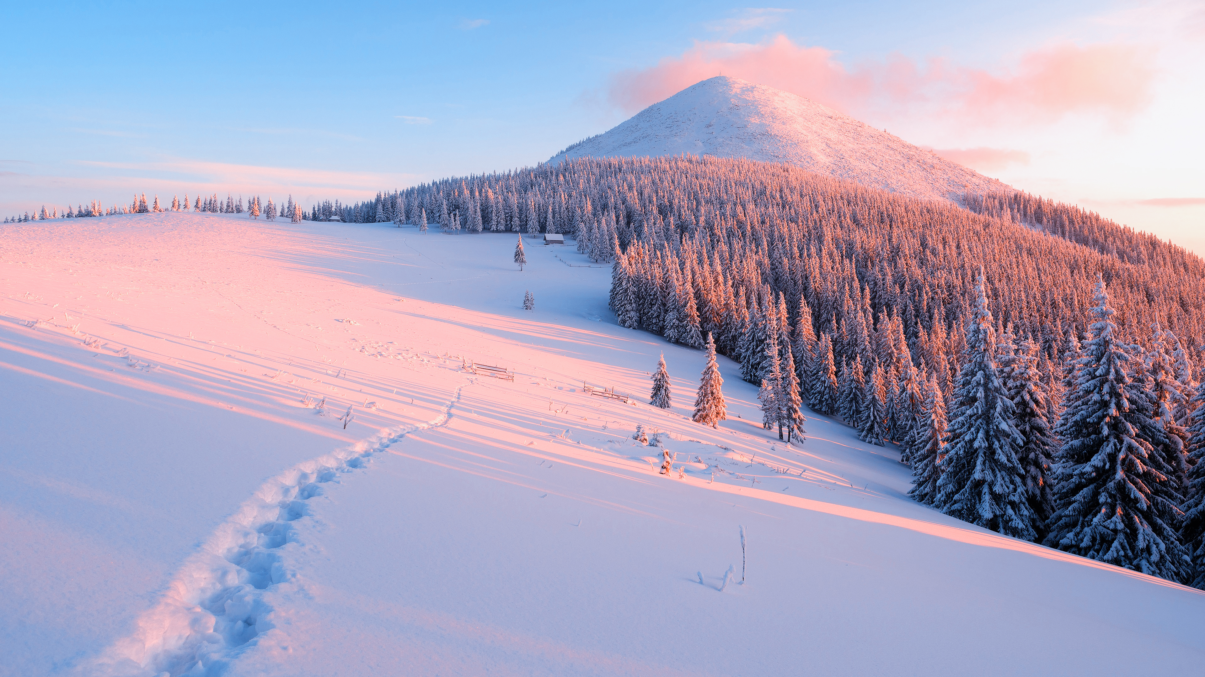 General 3840x2160 snow winter cold landscape forest