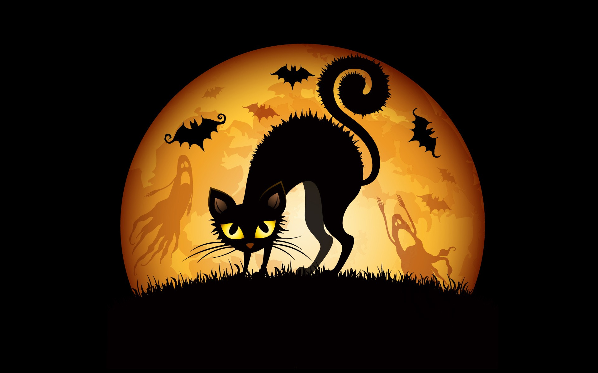 General 1920x1200 Halloween cats animals fantasy art