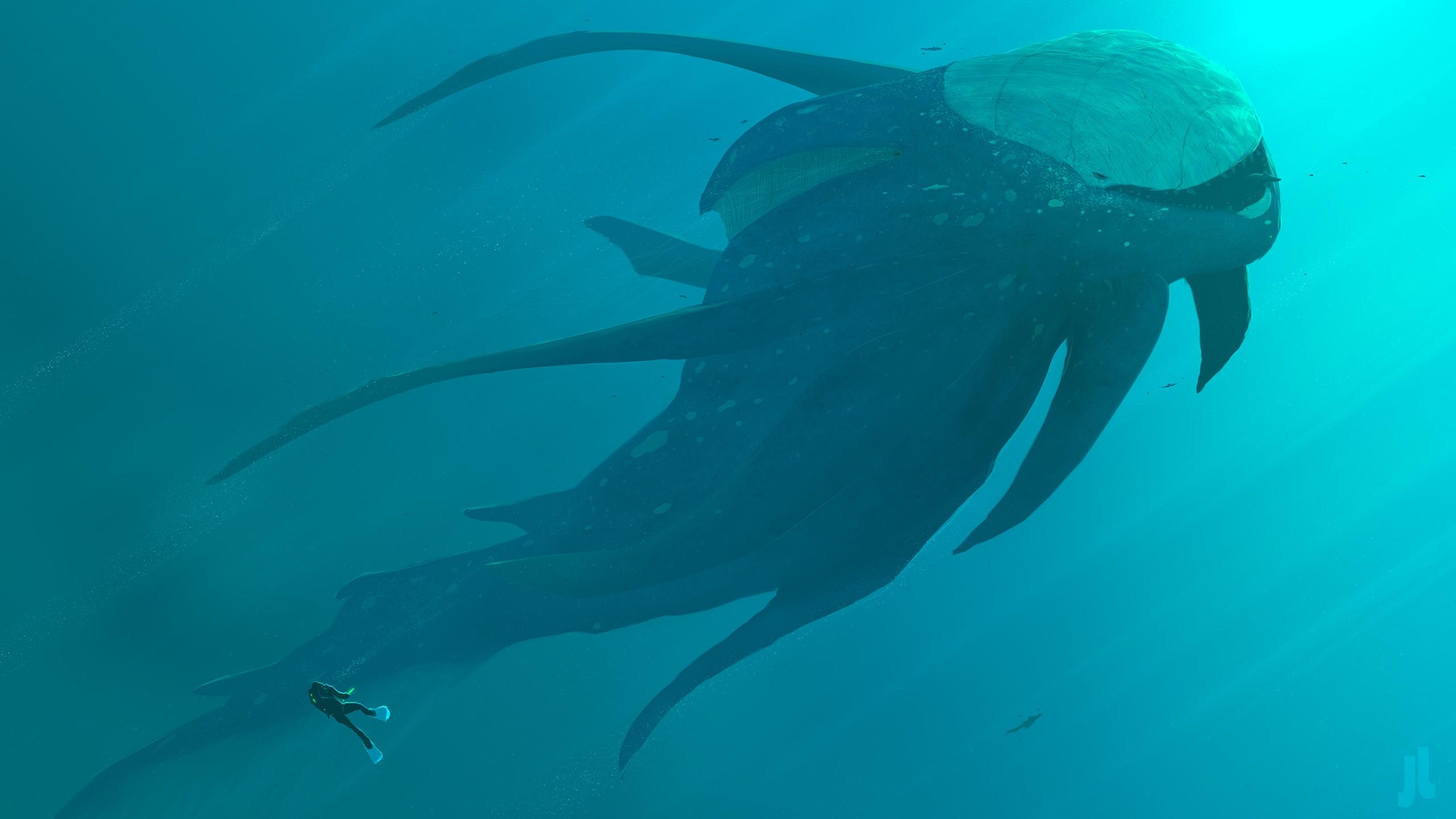 General 2560x1440 underwater turquoise cyan artwork