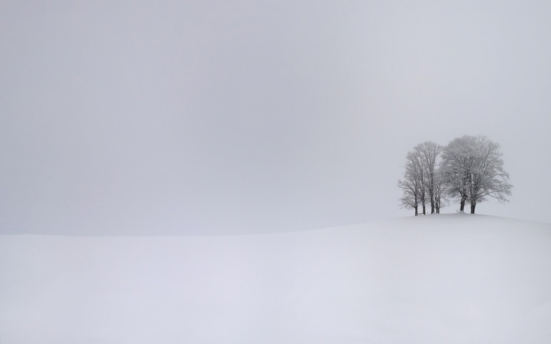General 2880x1800 nature landscape trees snow winter branch white monochrome hills simple overcast mist field
