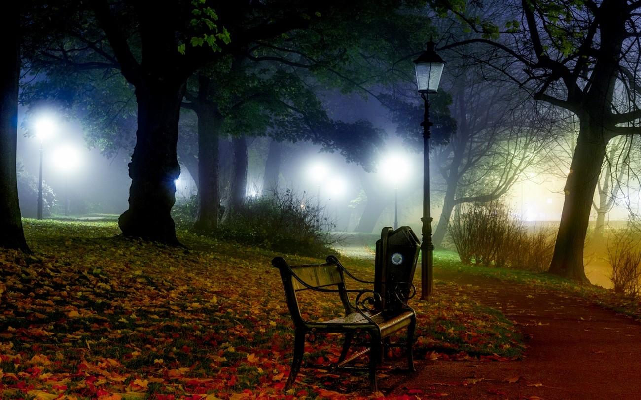 General 1300x812 nature landscape mist bench lantern park path grass leaves lights shrubs trees night