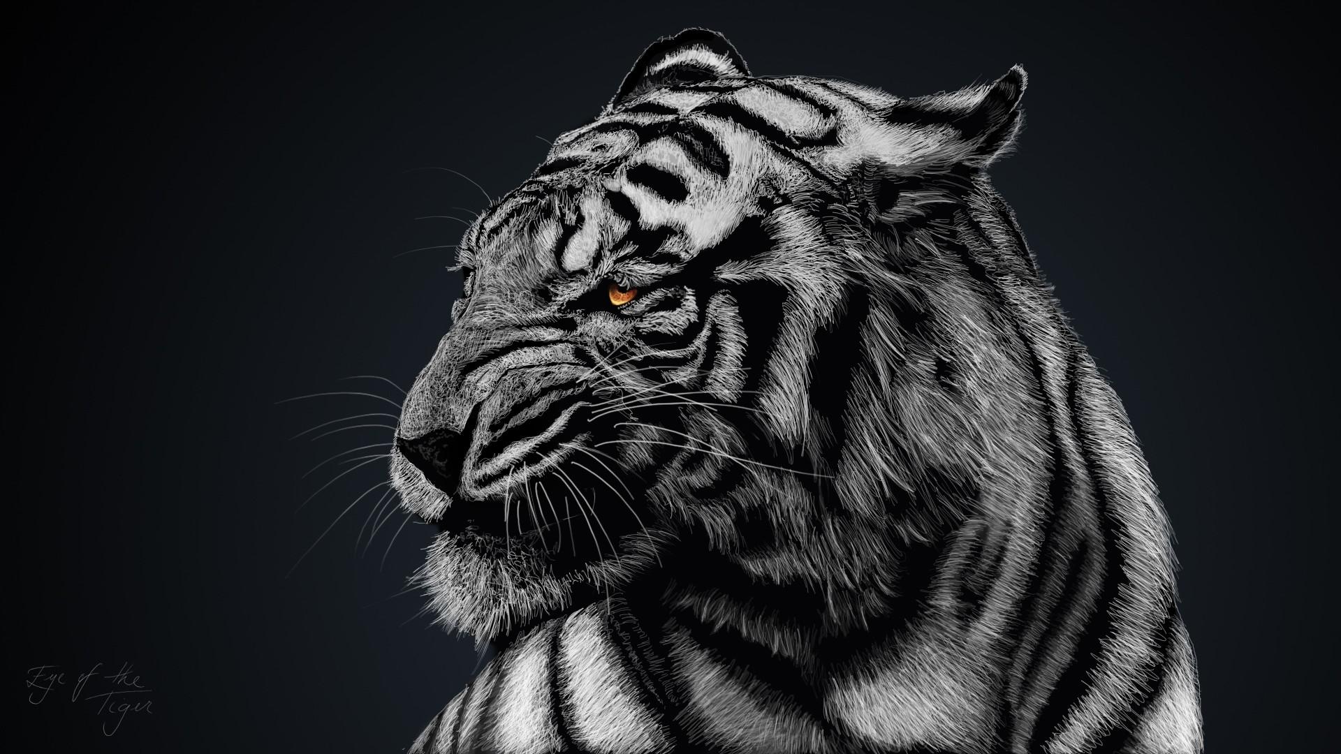 General 1920x1080 animals nature glowing eyes tiger mammals artwork big cats simple background DeviantArt
