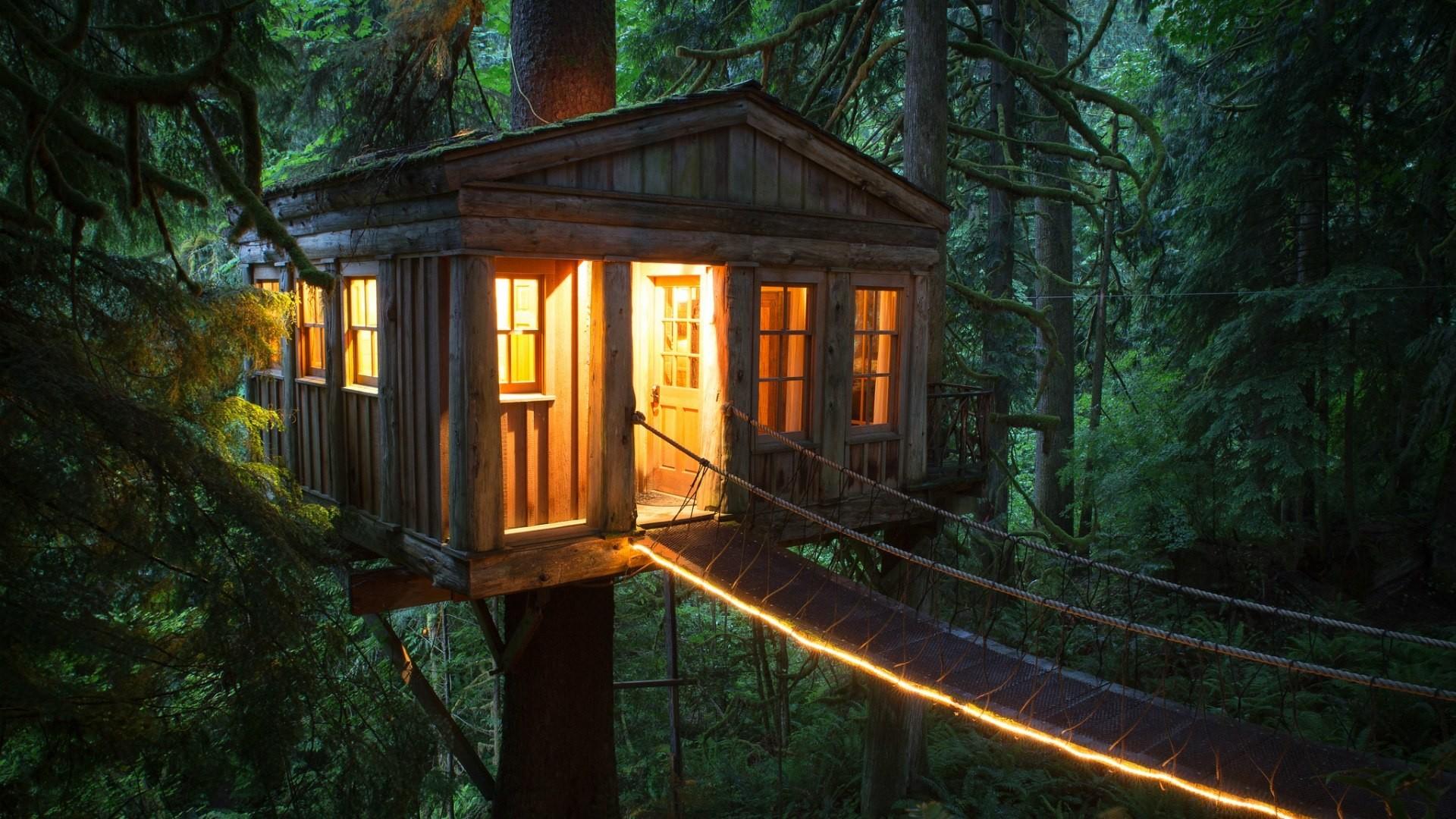 General 1920x1080 tree house outdoors warm trees plants bridge nature green lights door window hut yellow
