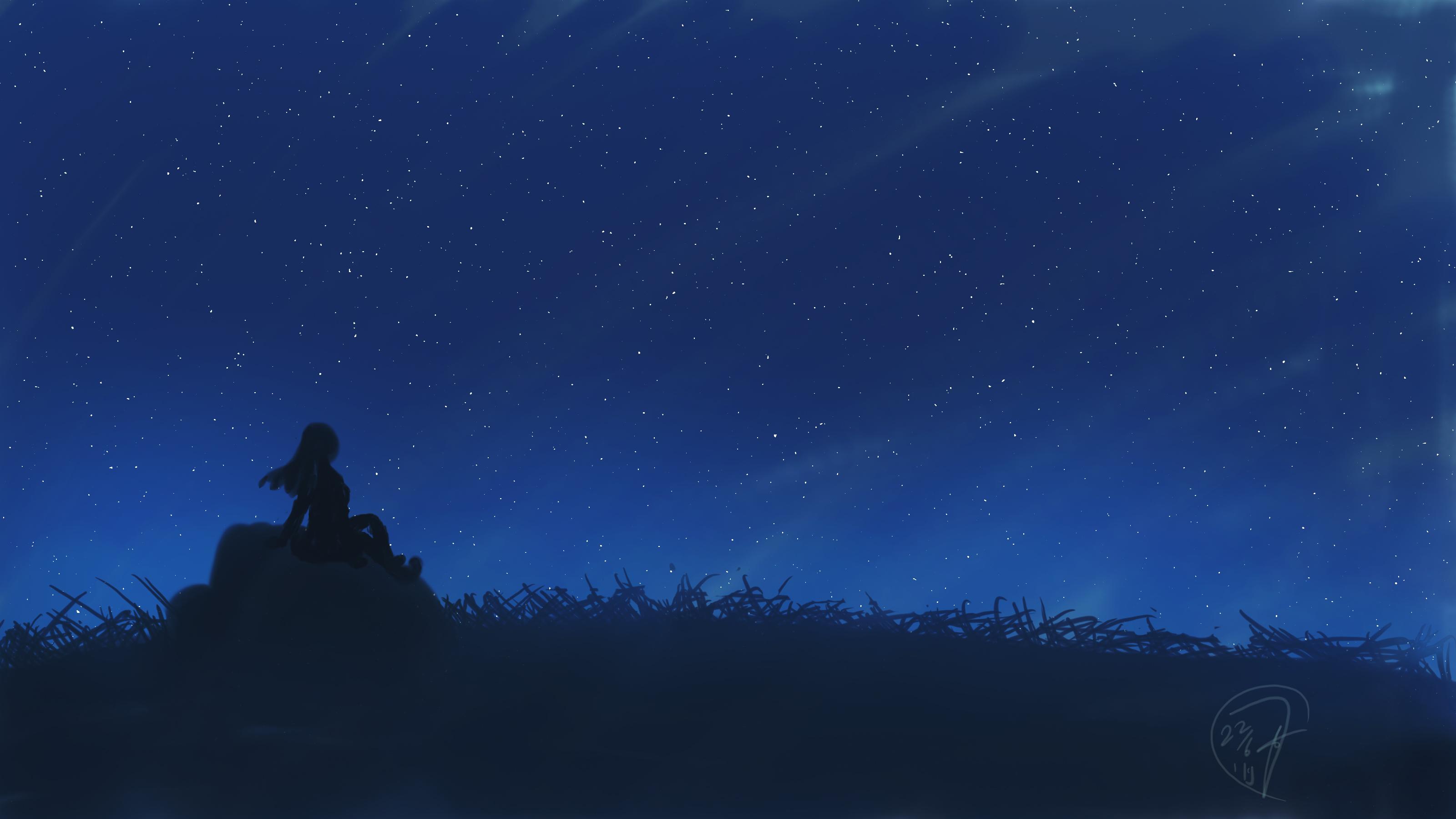 General 3200x1800 digital digital art artwork night sky skyscape nature silhouette women women outdoors blue stars starry night grass landscape rocks