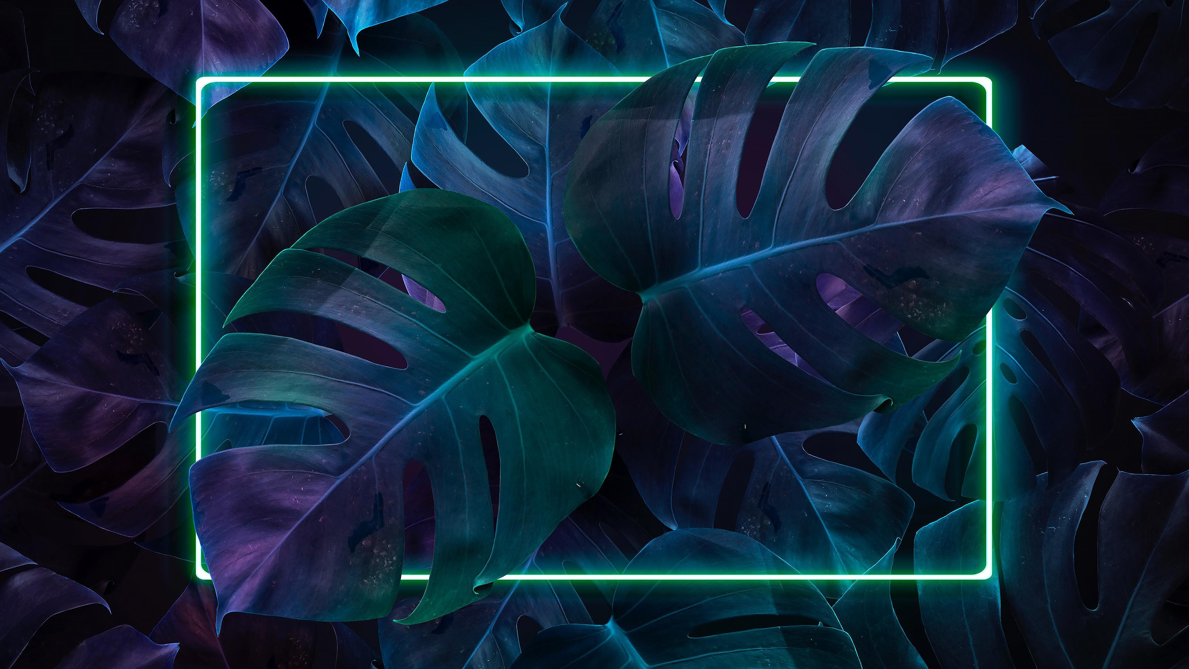 General 3840x2160 vaporwave plants artwork