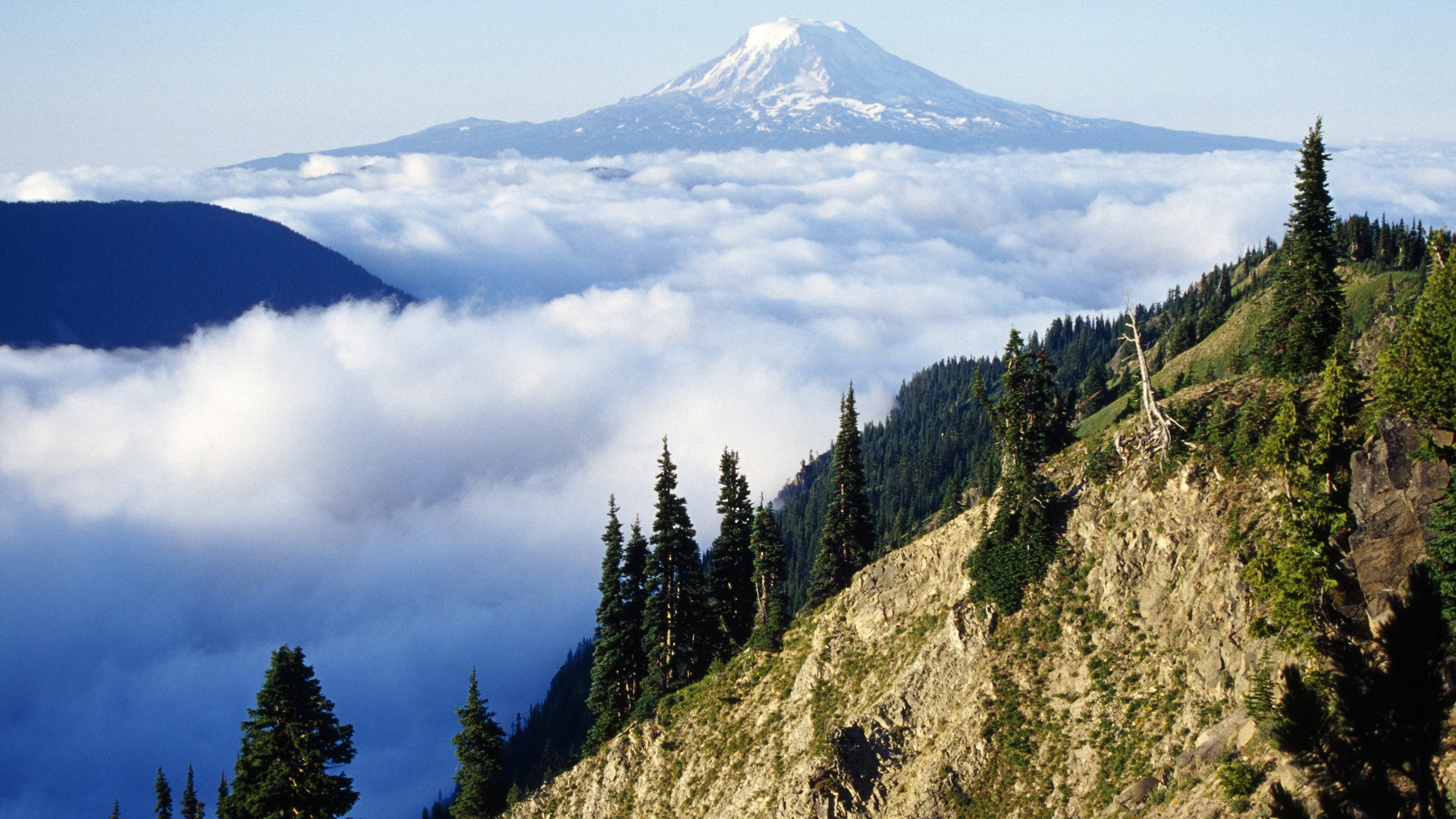 General 1920x1080 nature landscape mountains trees forest far view clouds snowy peak sky Mount Adams Washington USA