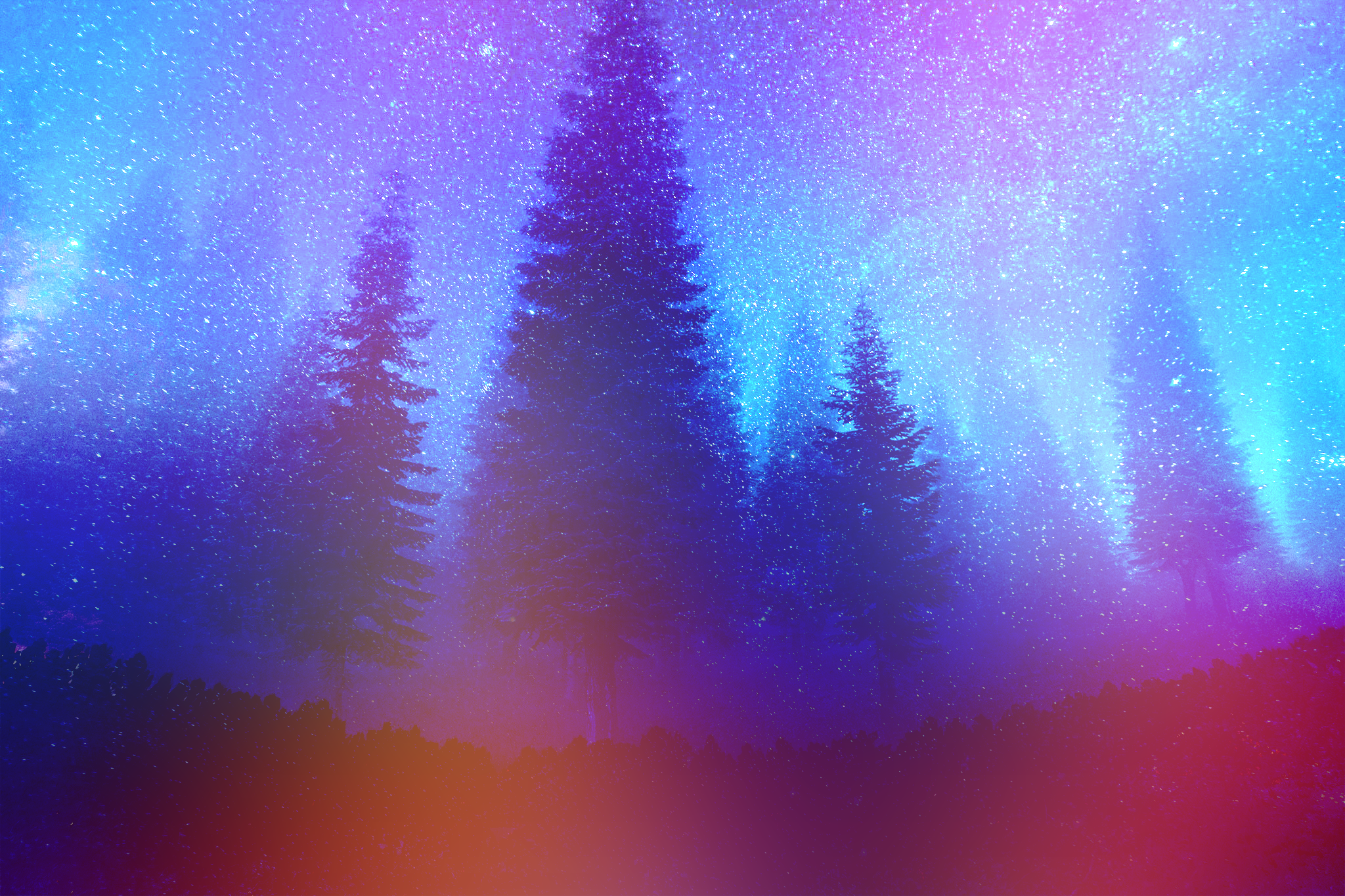 General 2048x1365 pine trees forest night colorful constellations mist stars nature retouching