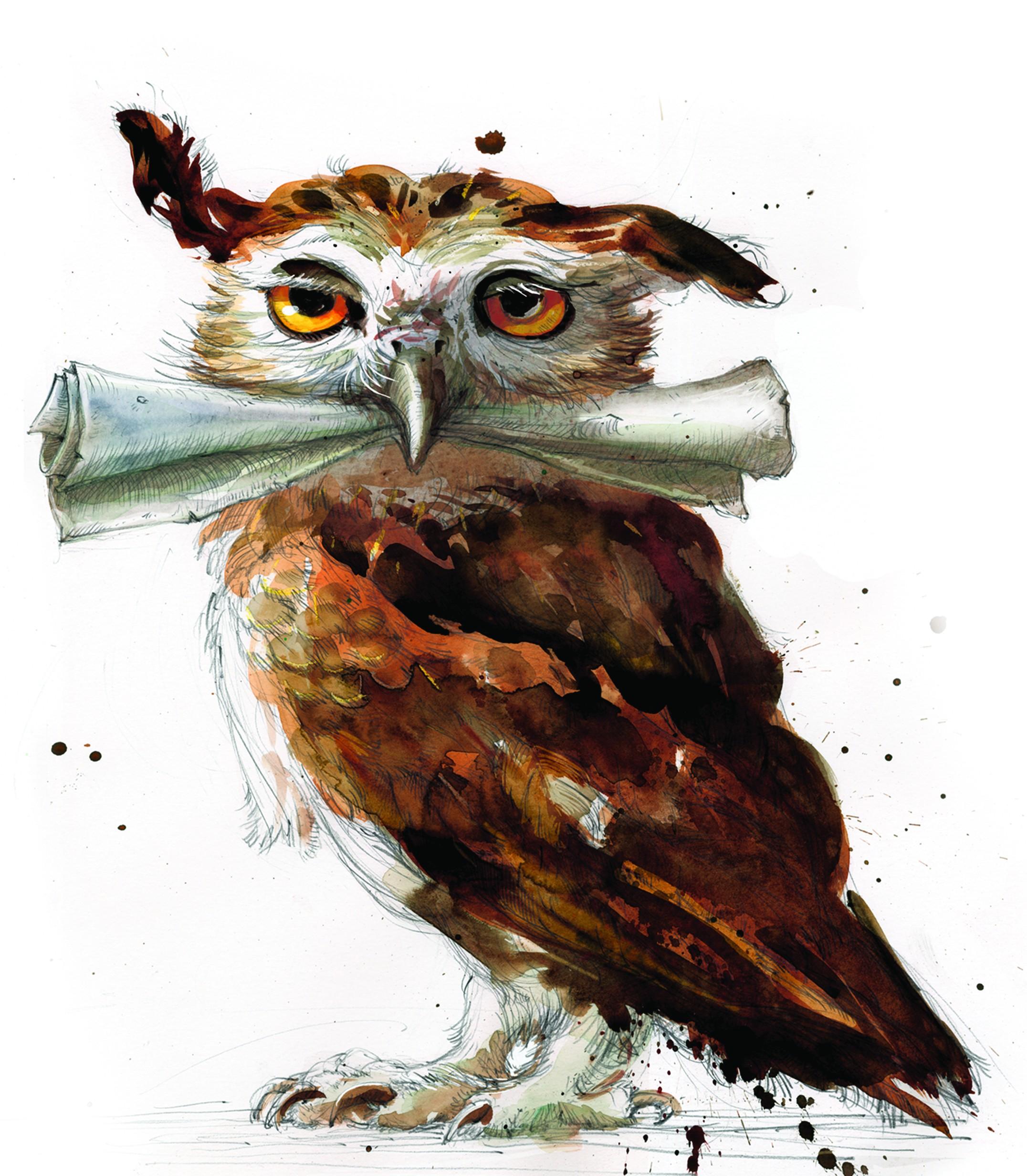 General 2152x2464 digital art fantasy art portrait display paper white background owl Harry Potter yellow eyes paint splatter painting