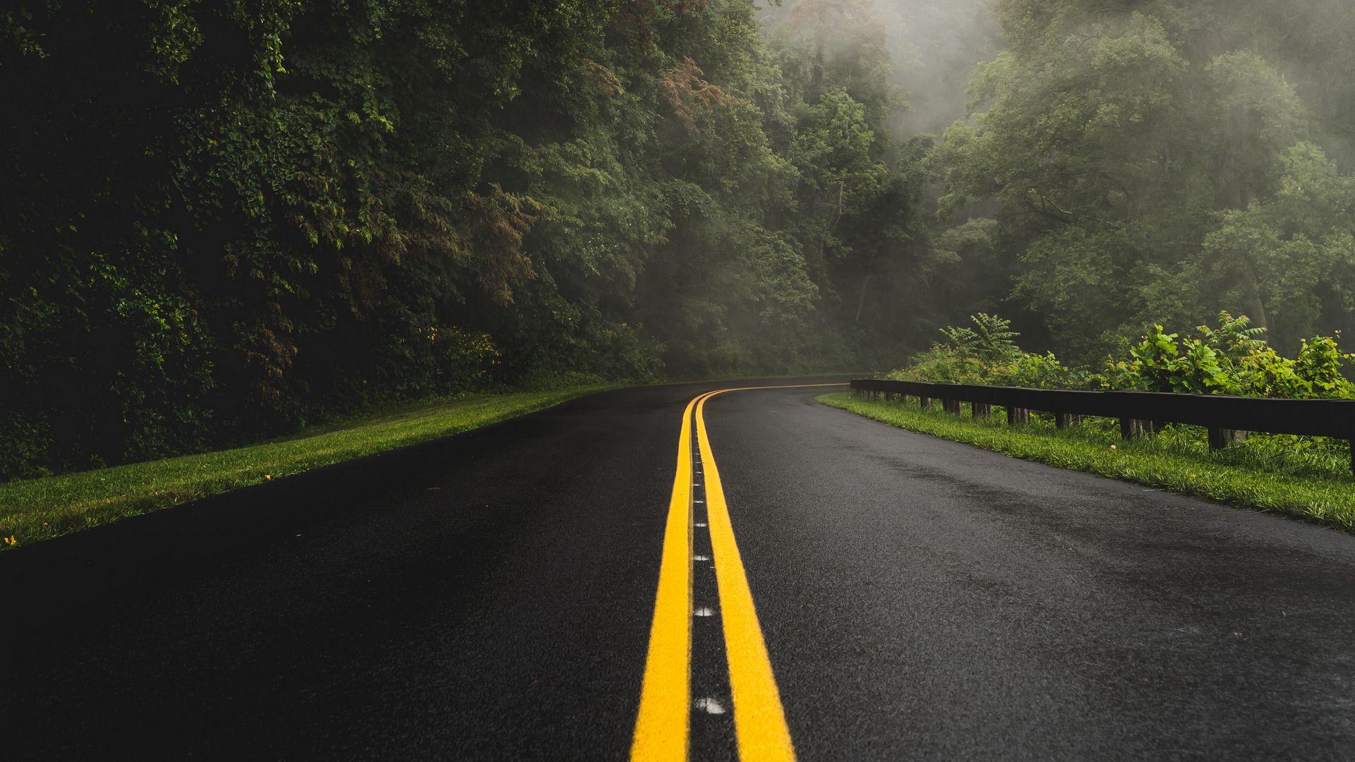 General 1920x1080 landscape nature road forest wet road trees mist plants