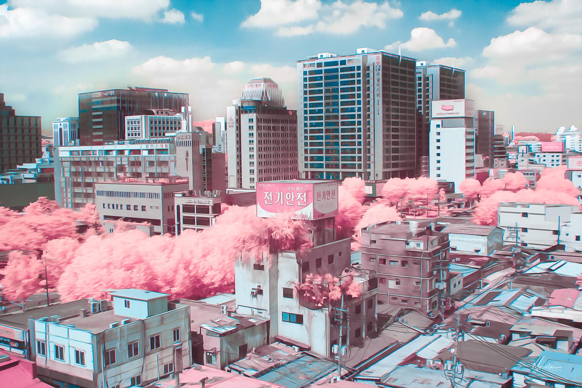 General 1920x1280 watermarked building cherry blossom Korean