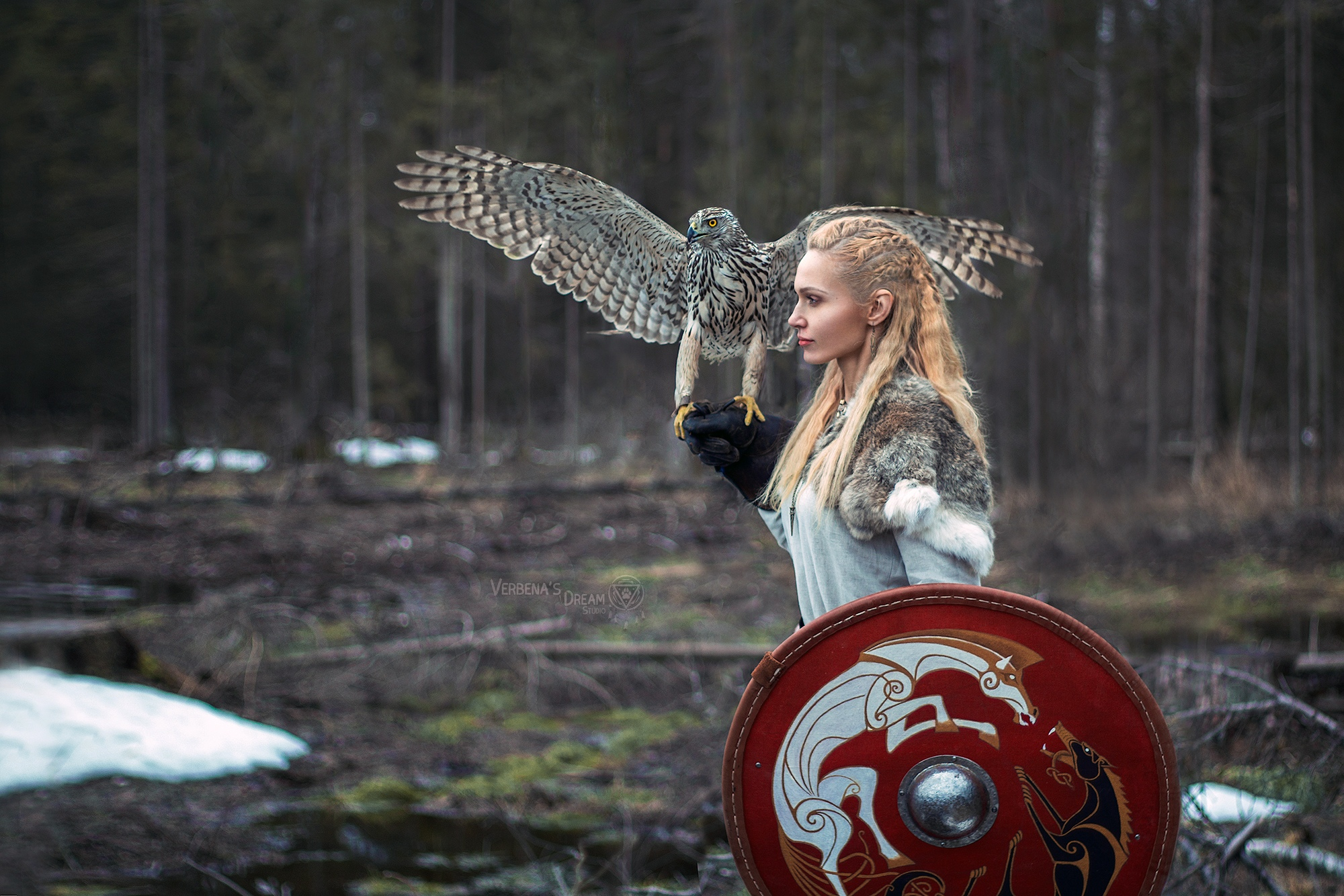 People 2000x1334 Darya Lefler women model blonde braided hair costumes cosplay Vikings shield Shields portrait outdoors eagle birds animals forest trees depth of field women outdoors fantasy girl