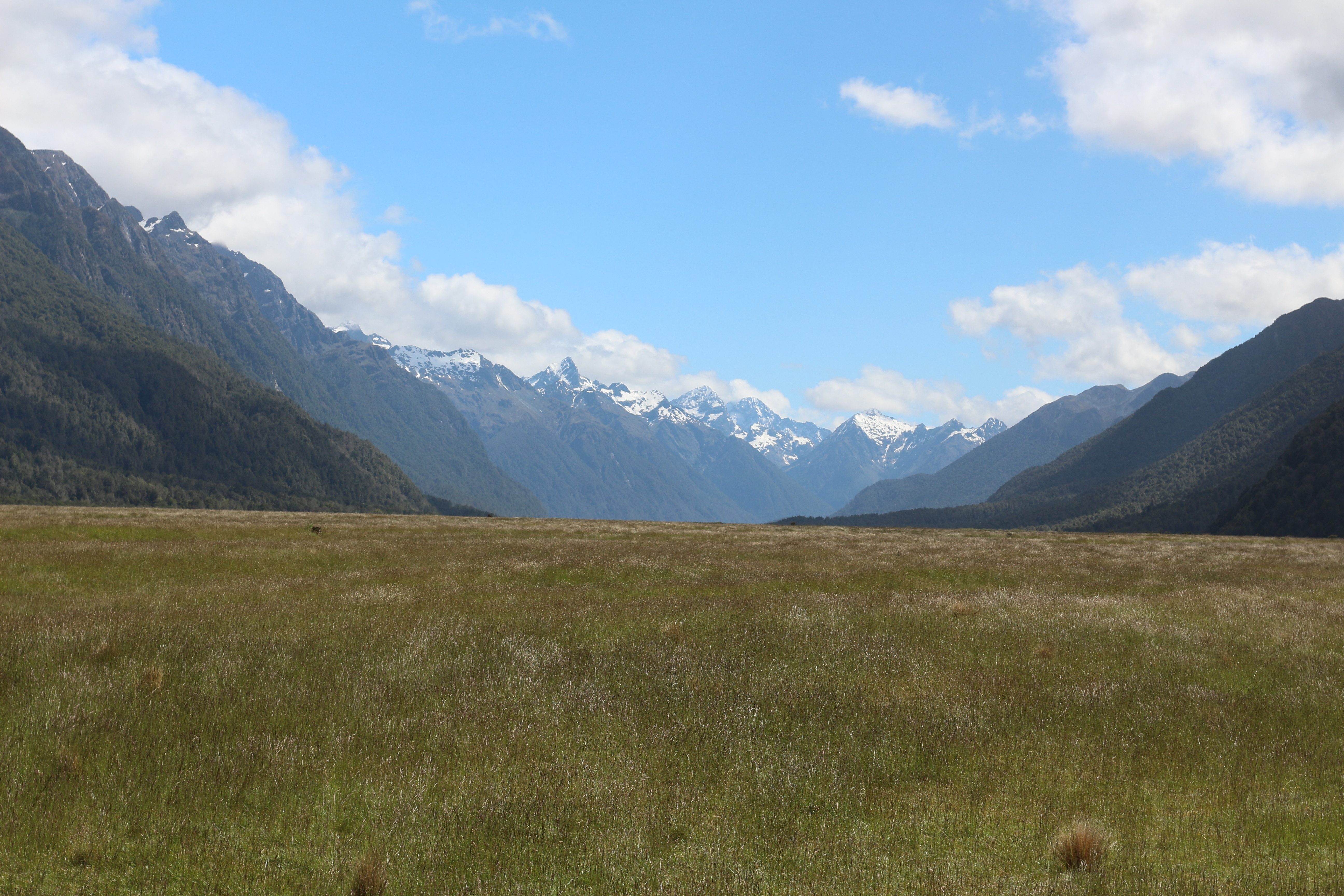 General 5184x3456 New Zealand Fiordland National Park landscape nature mountains