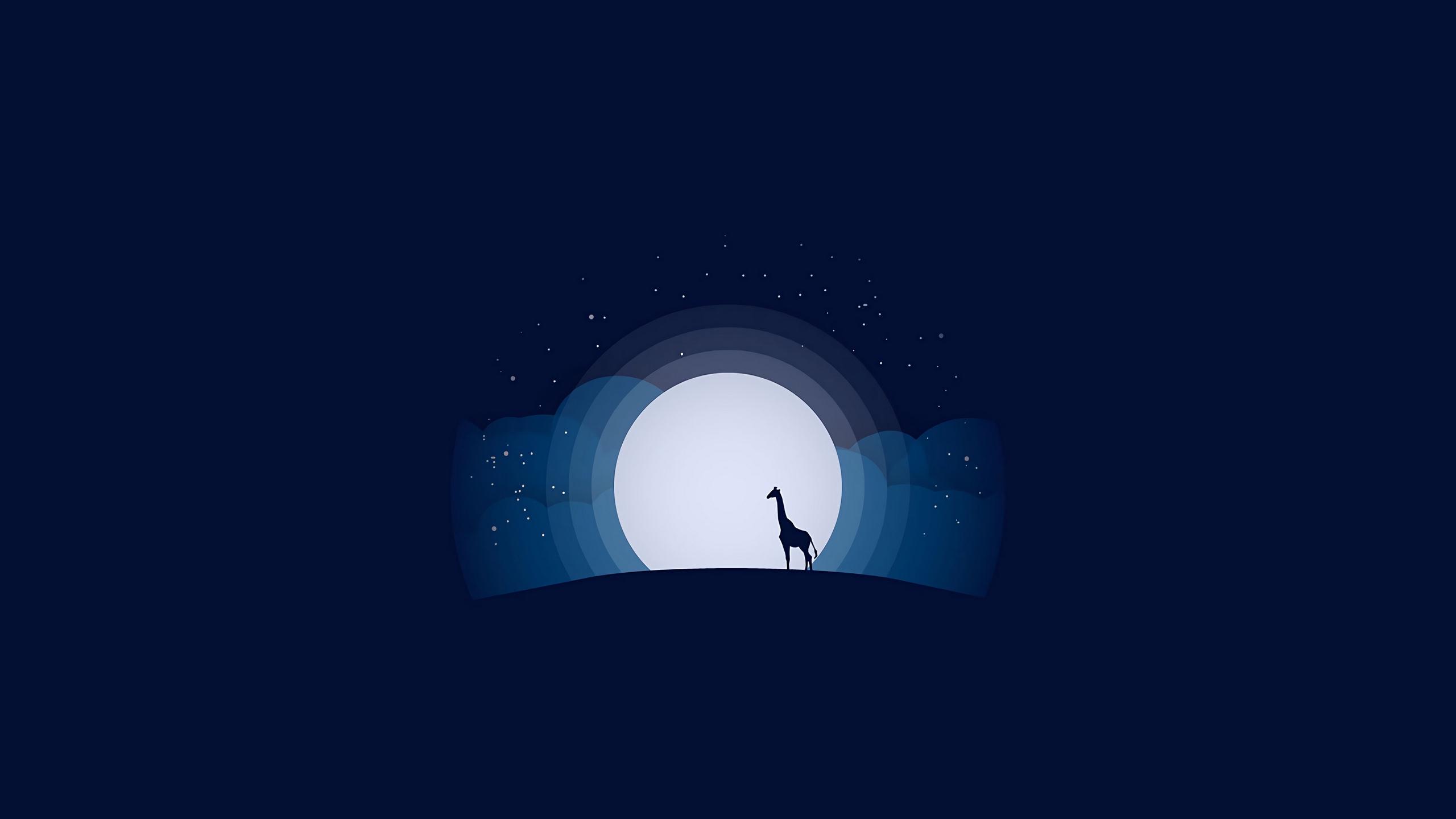 General 2560x1440 blue background simple background minimalism digital digital art artwork Moon moon rays moonlight night stars clouds giraffes hills vector art