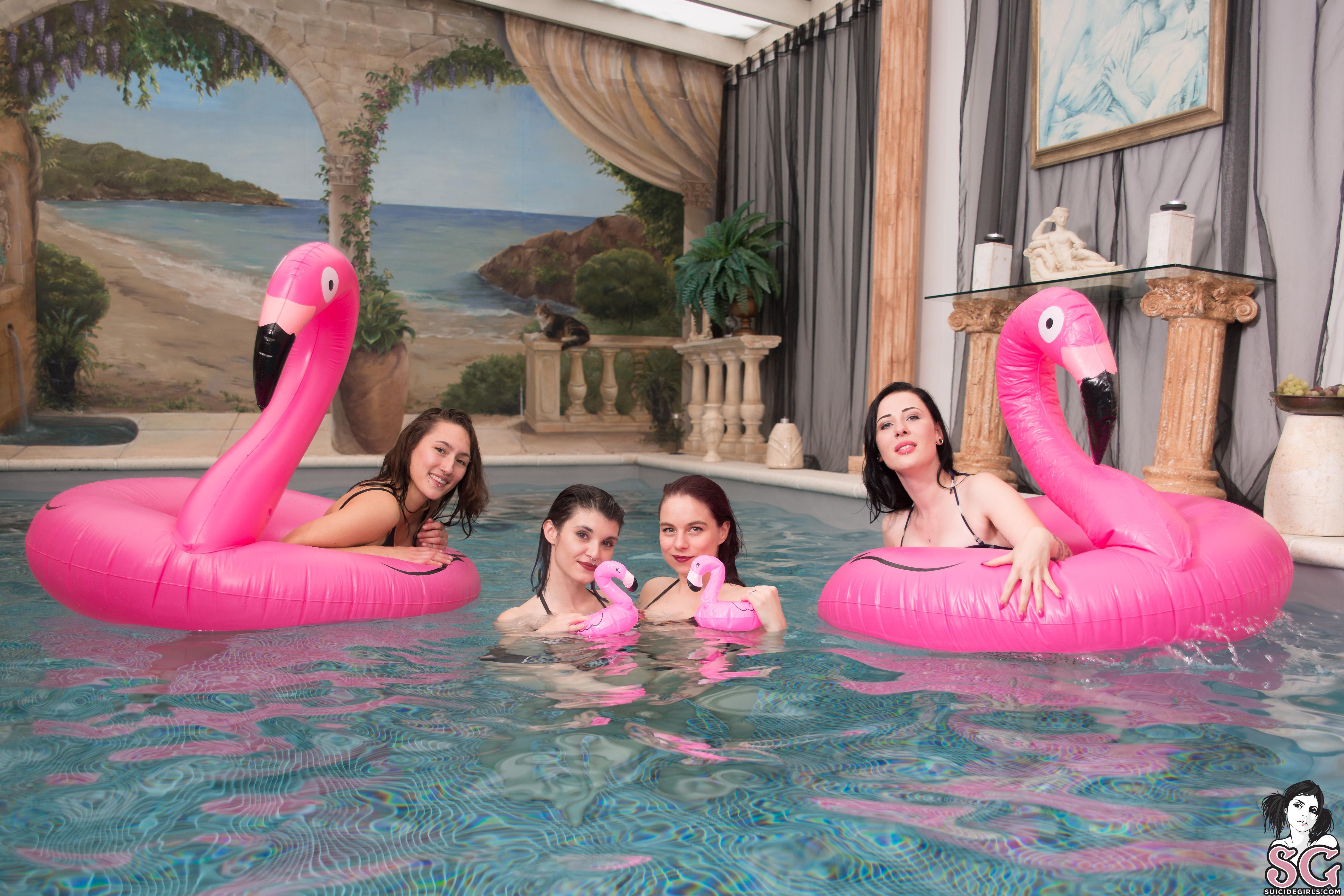 People 5147x3431 Suicide Girls tattoo group of women swimming pool april devine Nova Anne lara beard hailey fox flamingo floater