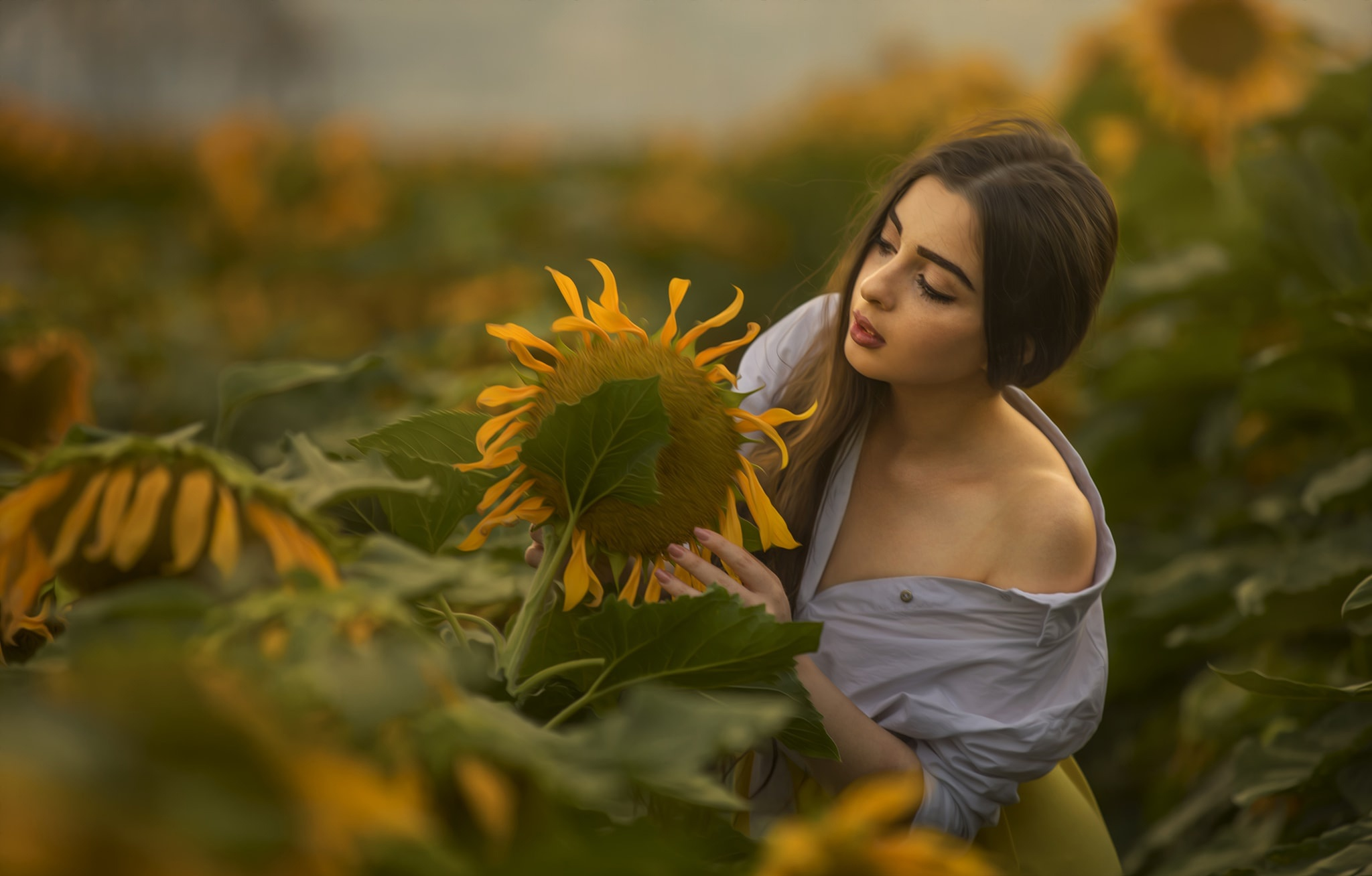 People 2048x1308 sunflowers portrait women flowers plants women outdoors
