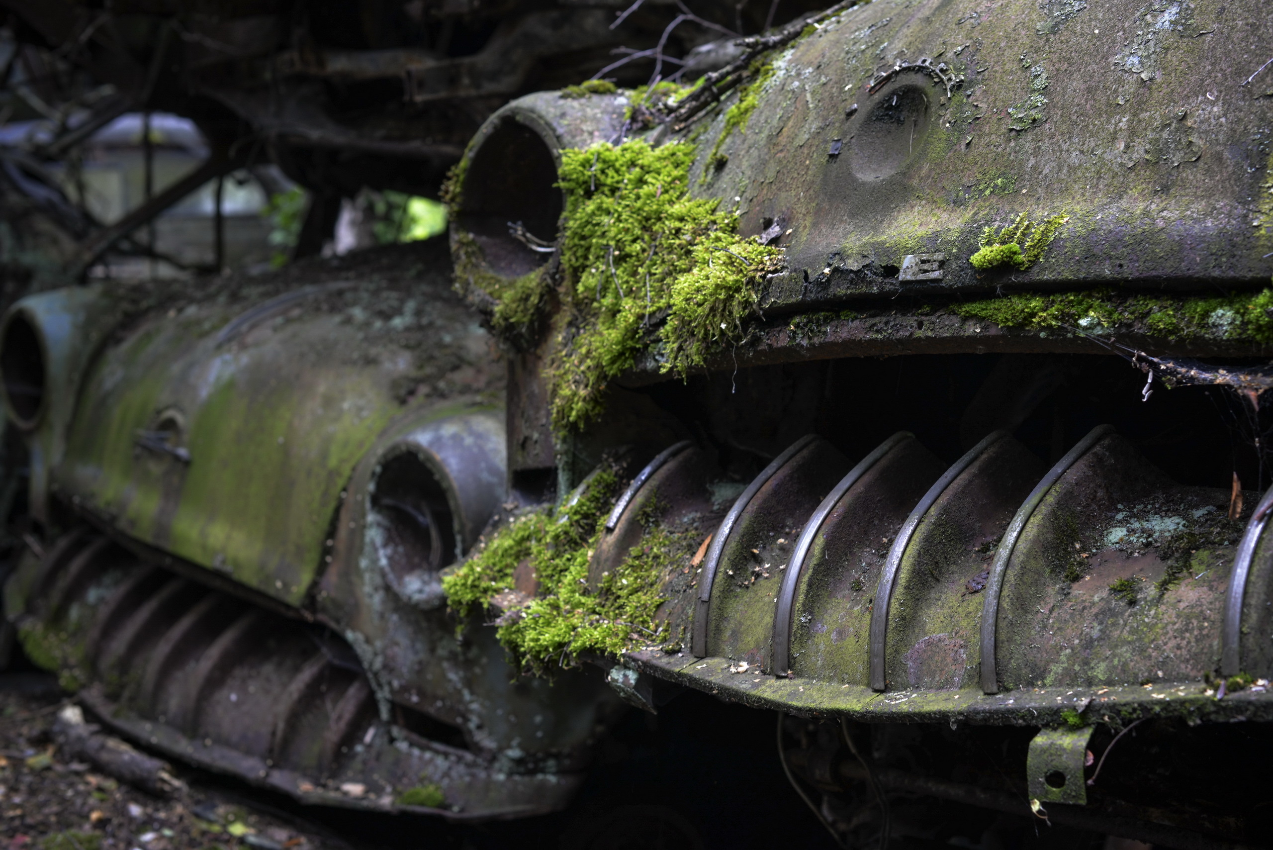 General 2560x1709 car moss vehicle rust wreck